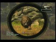 Cabela's lion 2