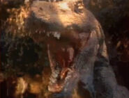 Fight-with-carnivore-movie-3dda