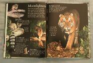 Mammals (Eye Wonder) (5)