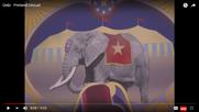 Oobi Elephants
