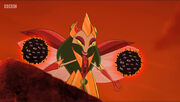 Queen of Weevils