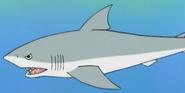 Batw 016 shark