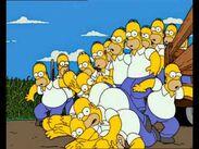Homer Clones