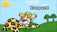 KLV Leopard