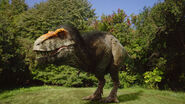 TNOT The Real T-Rex-03 (1)
