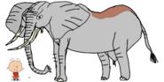 Stanley Griff meets African Bush Elephant