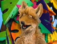Bart coyote