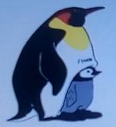 Batw-animal encyclopedia-emperor-penguin