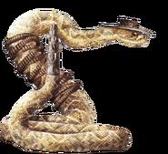 Rattlesnake Jake render