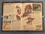 Wild Cats and Other Dangerous Predators (7)