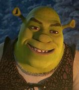 Shrek in Shrek the Halls