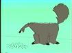 Stanley Anteater