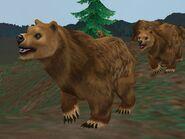 Zt2-grizzlybear
