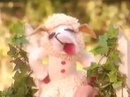 A7c81584369aac375181ee82a7f04e2c--lamb-chops