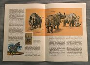 A Golden Exploring Earth Book of Animals (18)