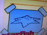 Stanley starfish