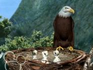 Little Einsteins Eagle