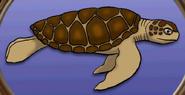Sea turtle in hugo lek och lar 7 hugo och djuren i havet