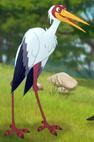 Stork TLG