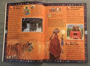 Wild Cats and Other Dangerous Predators (2)