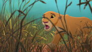 Lion-king2-disneyscreencaps com-3374