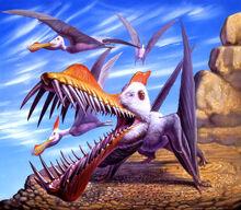 Rey caulkicephalus