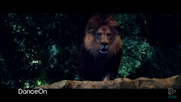 Zookeeper 2011 Lion