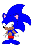 Anthony the Hedgehog's trunks