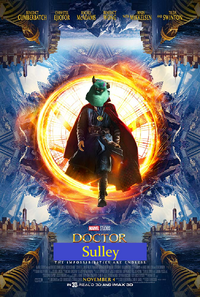 Doctor Sulley Poster