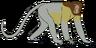 Elliot the Proboscis Monkey