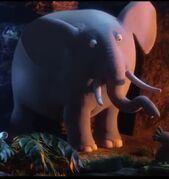 JungleBunch Elephant