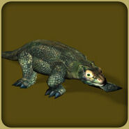 Komodo Dragon (Blue Fang)