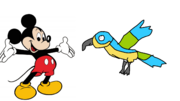Mickey meets Blue and Gold Macaw