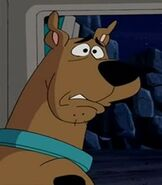 Scooby Doo in What's New, Scooby Doo
