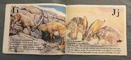 The Furry Animal Alphabet Book (6)