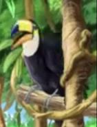 ABC Mouse Toucan