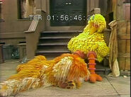 Big Bird and Barkley sleeping at the end of episode 1220