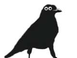 Flapsy the Crow