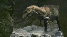 Giganotosaurus-0