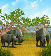 ZT-Black Rhinocerous