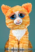 Cat in feisty pets sweet to scary stuffed animals