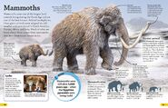 Mammoths Are Extinct Mammals
