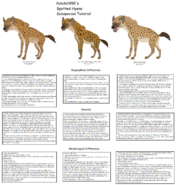Spotted hyena subspecies and diffrences