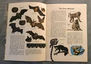 A Golden Exploring Earth Book of Animals (4)
