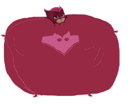 Inflated and Cute Owlette