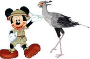 Mickey meets secratary