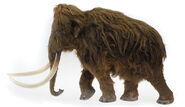 Woolly Elephant Model