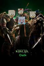 Teenage Mutant Ninja Owls Poster