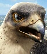 The-evil-falcon-stuart-little-2-57.6