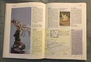 The Kingfisher Illustrated Encyclopedia of Animals (53)